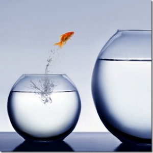 make-the-leap