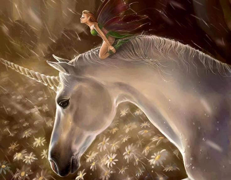 Unicorns And Fairies Real Unicorns and Fa...